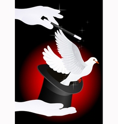 Magic dove vector