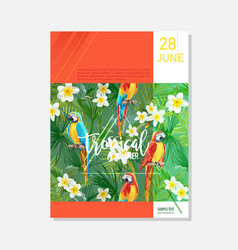 Brochure template tropical parrots graphic vector