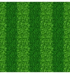Striped green grass field seamless vector image
