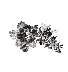 beautiful hand drawn flowers bouquet Element vector image vector image