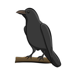 hand drawn bird raven vector image