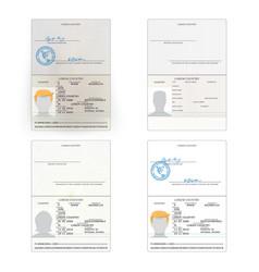 International passport set vector