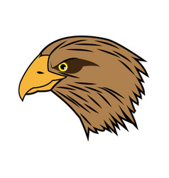 Cartoon head bald eagle bird national american vector