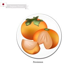 Kaki or Japanese Persimmon Popular Fruit in Japan vector image