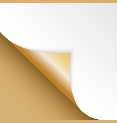 shape of bent angle is free for filling gold color vector image