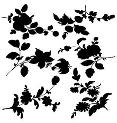 Silhouette black flowers vector