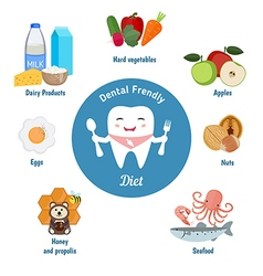 Dental friendly diet vector