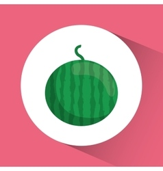 Watermelon icon nutrition and organic food design vector