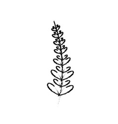 rustic branch with leaves design vector image