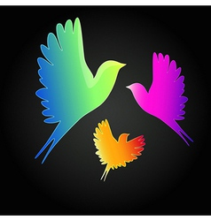 background with a flying birds vector image