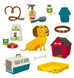 Dog care object set items and stuff cartoon vector