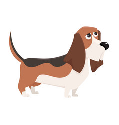 Cute purebred basset hound dog character cartoon vector