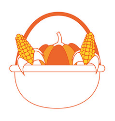 pumpkin and corns design vector image
