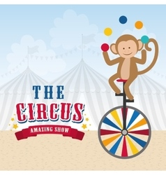 Circus icon design vector image