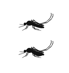 Mosquito black silhouettes vector