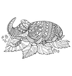 Rhinoceros beetle insect coloring book vector