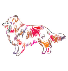Colorful decorative standing portrait of sheltie vector