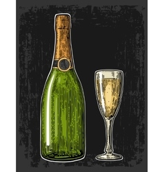 Champagne glass and bottle vector image vector image