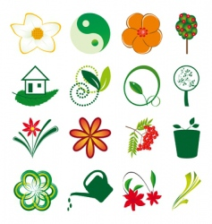 A collection of natural elements vector