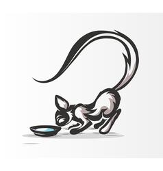 cat drinking milk vector image vector image
