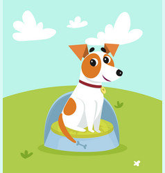 Cute jack russell terrier sitting on dogs bed in vector
