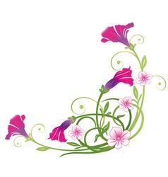 Petunias summer vector image vector image