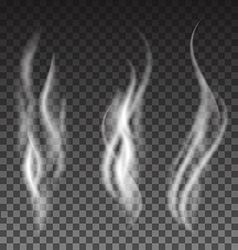 White smoke set on translucent background vector image