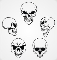 Skulls collection vector
