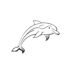 Doodle dolphin vector