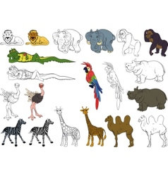 Set of african animals vector