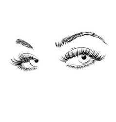 Female eyes drawing long eyelashes vector