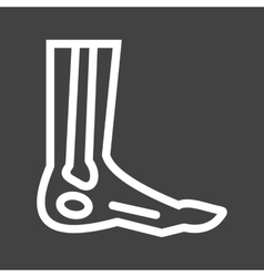 Foot skeleton vector