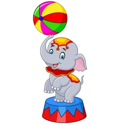 Circus elephant with a striped ball stands vector