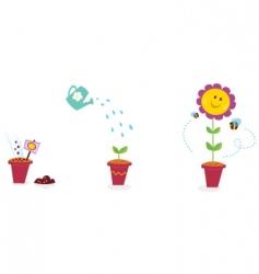 garden flower growth stages sunflower vector image