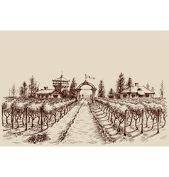 Vineyard drawing etch style Farm entrance and vine vector image vector image