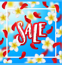 hand drawn calligraphy sale vector image vector image