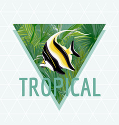 tropical fish background summer design vector image vector image