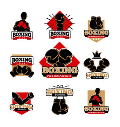 boxing championship and sport club isolated vector image