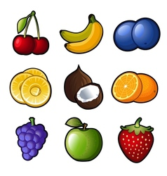 Set fruit icons vector image