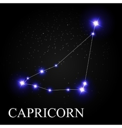 Capricorn zodiac sign with beautiful bright stars vector