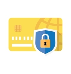 Credit card and Padlock vector image vector image