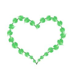 Fresh Green Vine Leaves in A Heart Shape vector image vector image