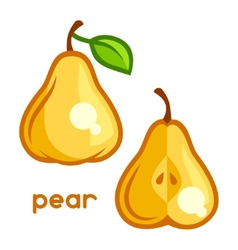 Stylized of fresh pear on white vector image