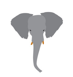 Isolated abstract elephant head vector