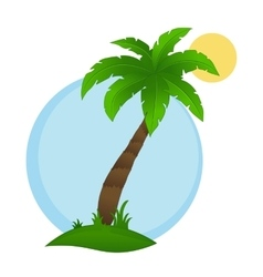 Palm tree on a white background vector