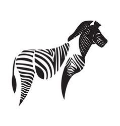 isolated abstract zebra vector image