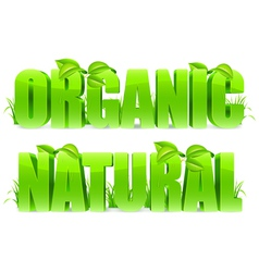 Organic and Natural words vector image vector image