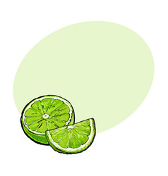 Half and quarter of ripe green lime hand drawn vector