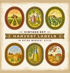 Vintage colorful harvest labels set vector