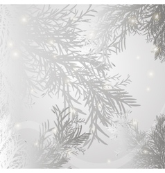 Background branch spruce gray vector